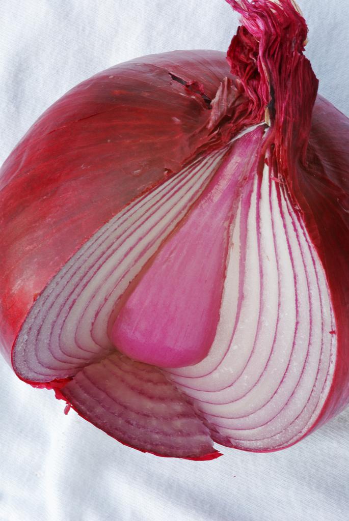 Peeling The Onion Quotes. QuotesGram