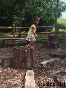 Take each obstacle one stump at a time!